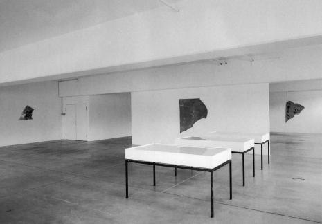 Adrian Schiess_Galerie_Susanna Kulli_1994