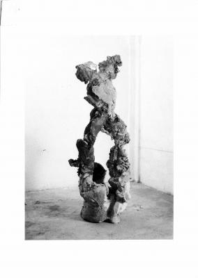 Giuseppe Spagnulo - Galerie Susanna Kulli - Daphne - 1986 - 1/1