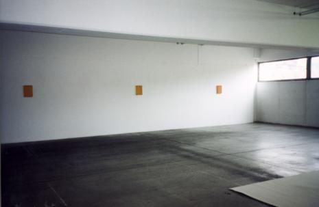 Rudolf Stingel_Galerie_Susanna Kulli_Zurich