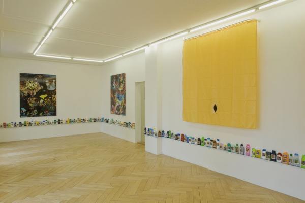 Peter Z. Herzog - Galerie Susanna Kulli - Hammam/Bathcare/Psycho/Cosmology - 2009 - 3/8