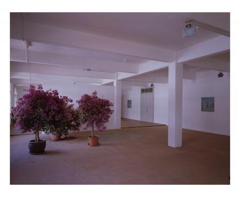 Gaylen Gerber_Galerie_Susanna Kulli_1997