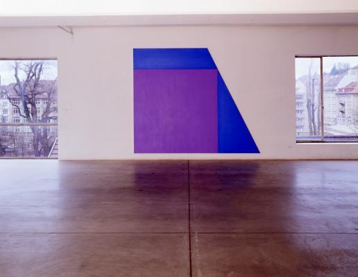 Olivier Mosset_Galerie Susanna Kulli_shaped canvas_1994