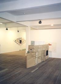 Peter Z. Herzog - Galerie Susanna Kulli - Recent Access - 2000 - 1/3